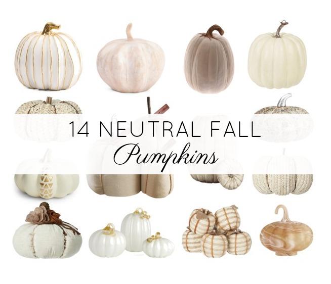 14 Neutral Fall Pumpkins For Farmhouse Decor Crafting With Cat Hair